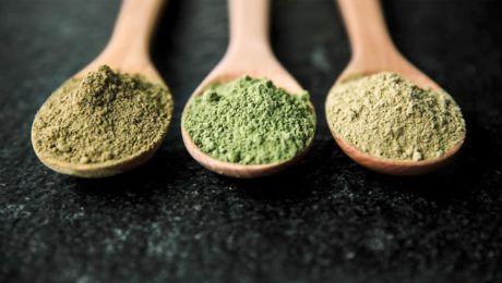 Which One Should You Go For – Kratom Powder Or Kratom Capsules?