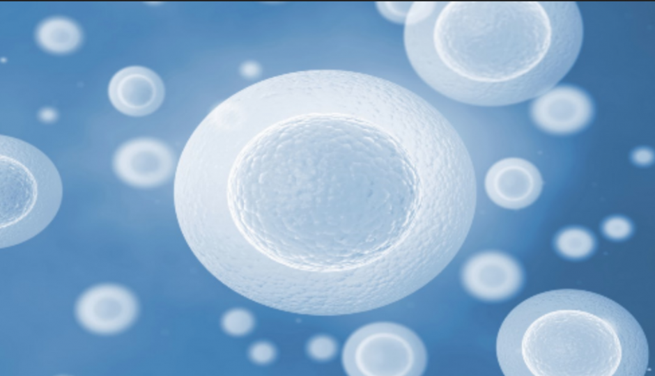 A Guide to Stem Cell Therapy vs. Joint Replacement Surgery
